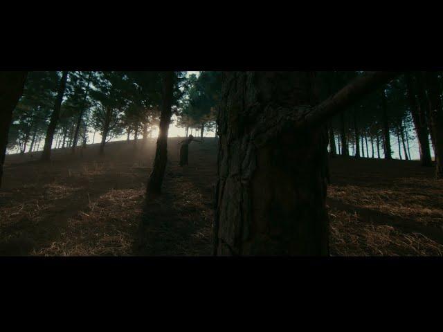 [Video] Fireboy DML Ft.  Smoke – Champion